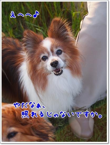 d0013149_00595083.jpg