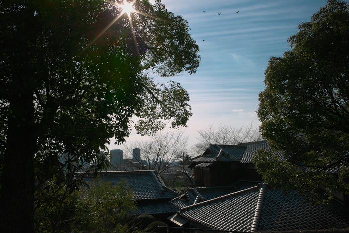 神戸 北野 スナップ_f0021869_22412718.jpg