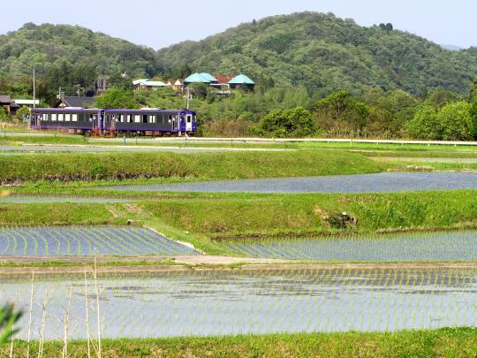 JR関西本線沿いも田植えが始まりました_f0266284_18194427.jpg