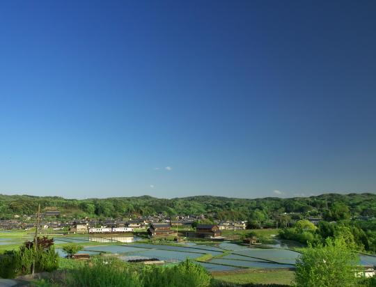 JR関西本線沿いも田植えが始まりました_f0266284_18195550.jpg