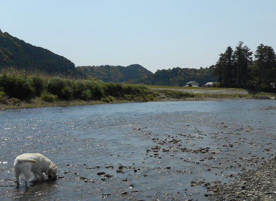 川へGO_b0145486_21231413.jpg