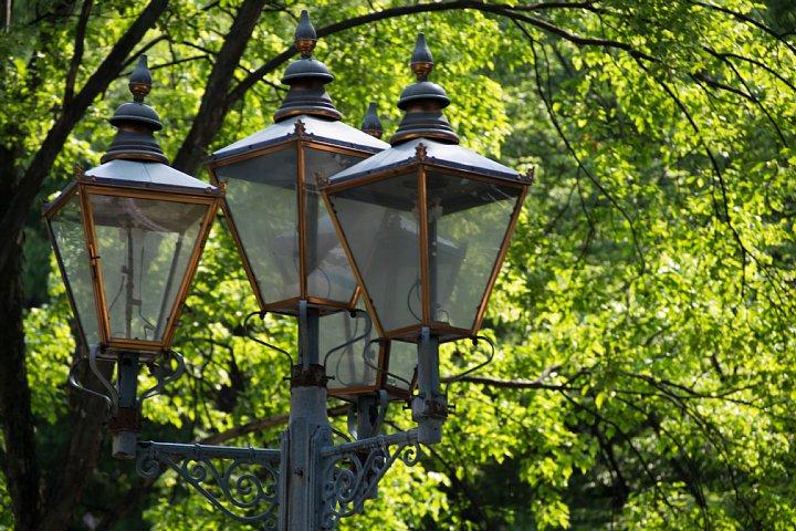 初夏の光が溢れるセントラルパーク_d0353489_21144687.jpg