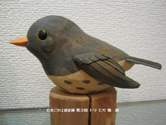 たまごの工房 企画展 「第3回 トリ・とり・鳥 展」 その6   _e0134502_1832550.jpg