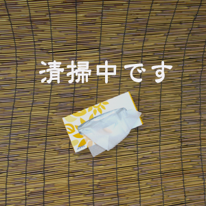 c0211810_1175118.jpg