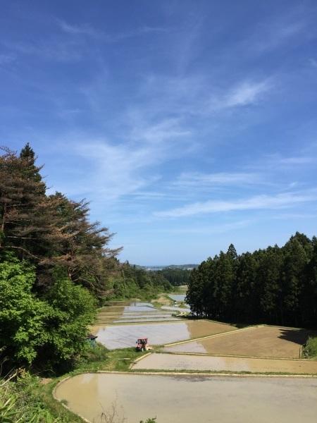 5/19(土)気仙沼へ _a0103940_14370776.jpg