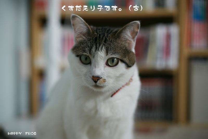 f0032042_354251.jpg