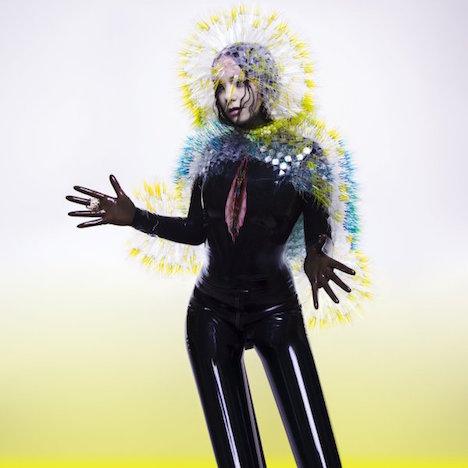 メトロポリタン美術館とビヨークに抜擢された日本人デザイナー、武田麻衣子さんのヘッドピースがすごい!_c0050387_1504263.jpg