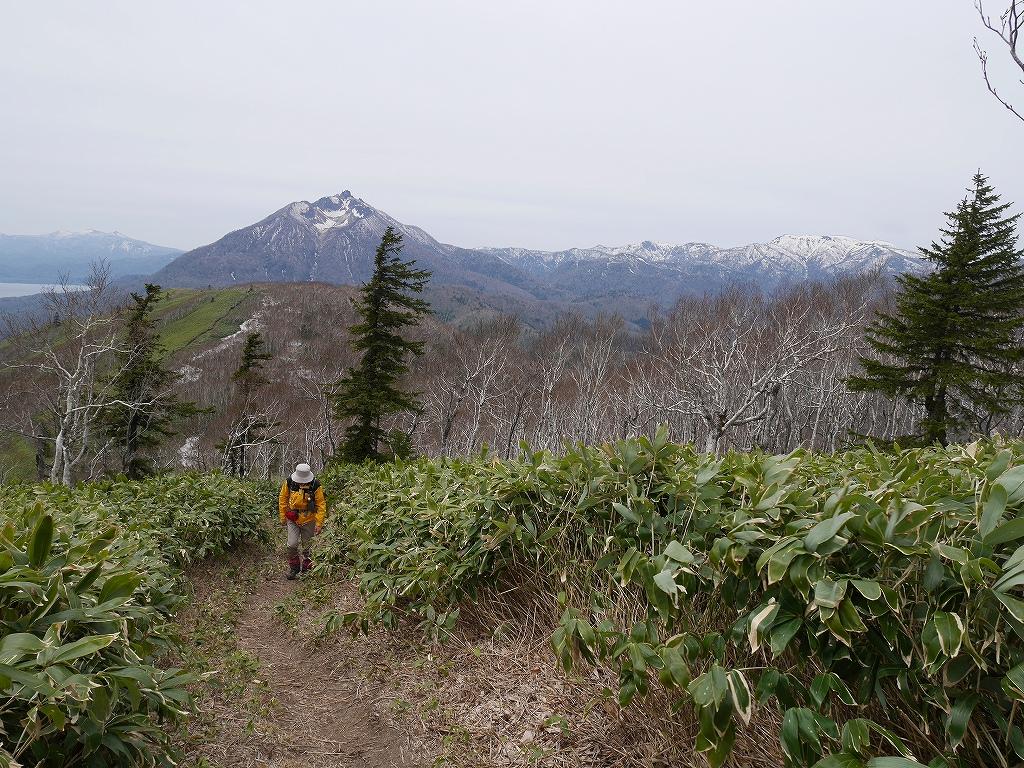 イチャンコッペ山、5月15日-速報版-_f0138096_1643751.jpg