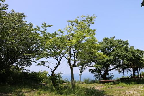 高松近郊の名所・旧跡・9_c0075701_948477.jpg