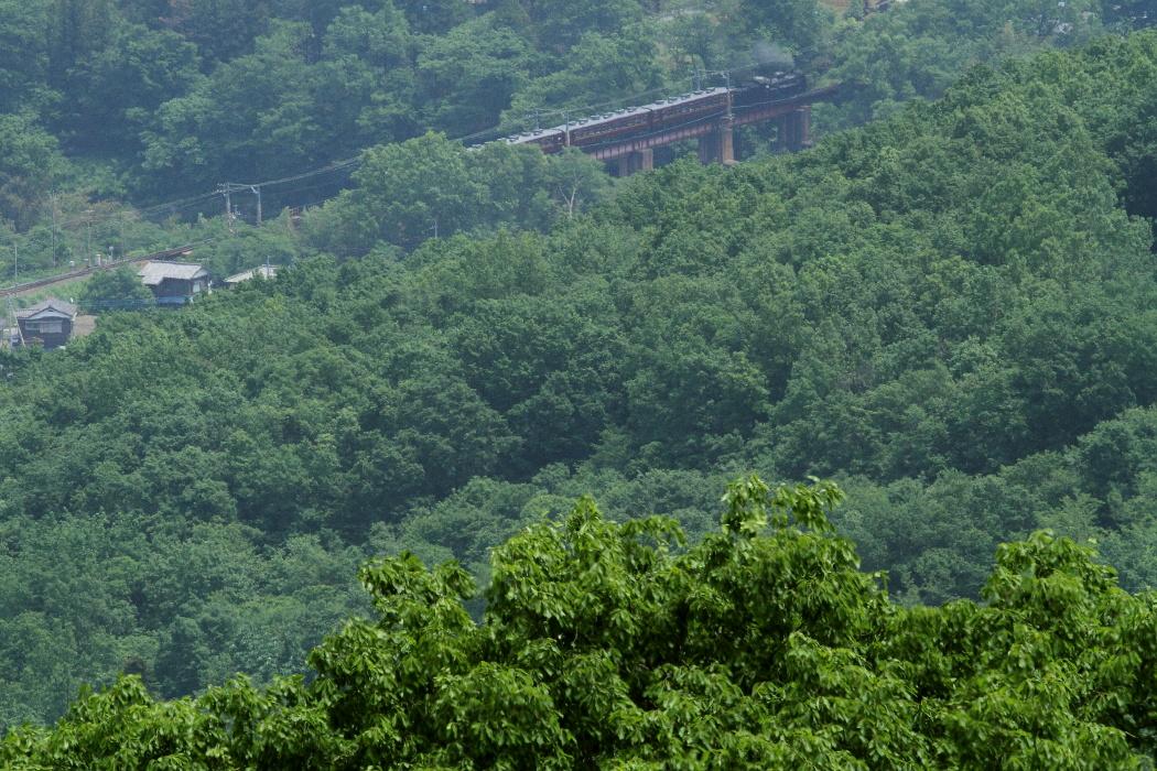緑に囲まれた鉄橋 - 2016年春・秩父 -  _b0190710_21511237.jpg