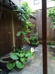 雨の京都へ _a0059035_20341090.jpg