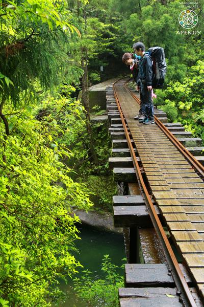 縄文杉へ、のんびりと。_f0252883_14005092.jpg