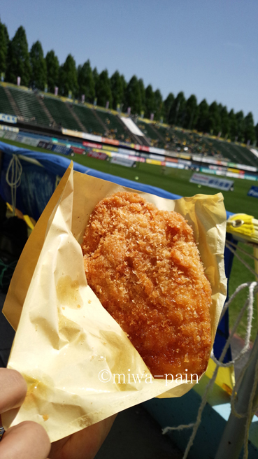 【2016年GW】栃木サッカー観戦DAY_e0197587_2236738.jpg