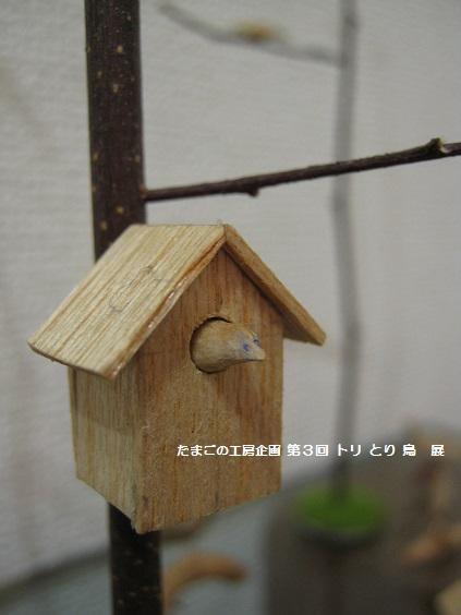 たまごの工房 企画展 「第3回 トリ・とり・鳥 展」 その7 _e0134502_1547228.jpg
