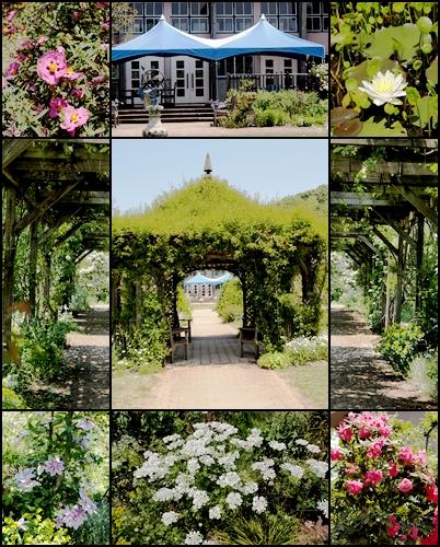 熊山英国庭園&バラ園_c0026824_1834210.jpg