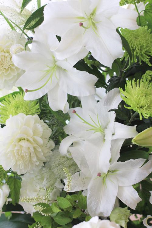花を贈ること_f0296440_1003347.jpg
