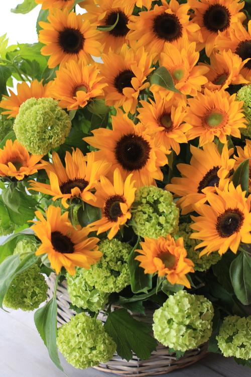 花を贈ること_f0296440_1010074.jpg