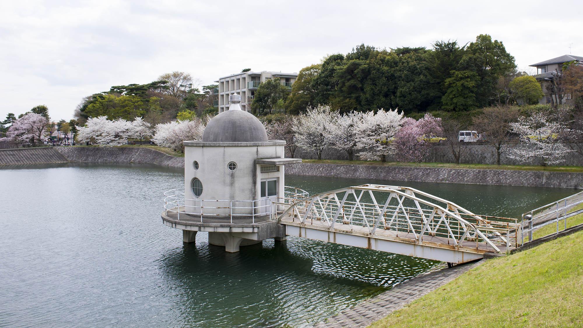 春の写真_f0145674_1959314.jpg