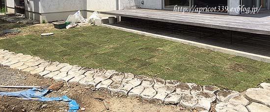 待望の芝生張り_c0293787_15022681.jpg