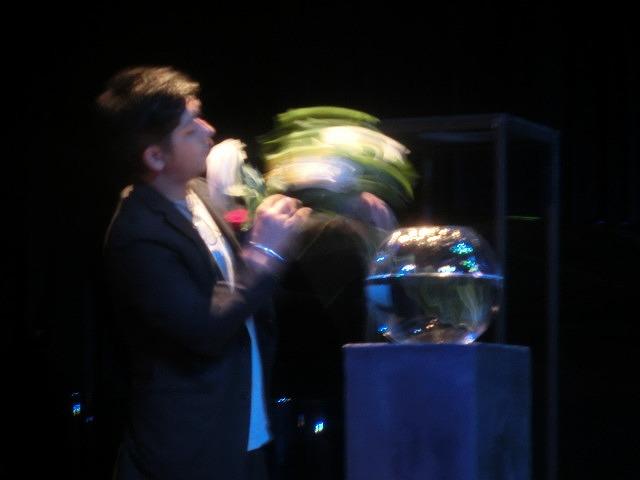 花で「想いの重さ」を表現するフラワーパフォーマンス集団「gram.」 ばらサミット in Fuji_f0141310_7401999.jpg