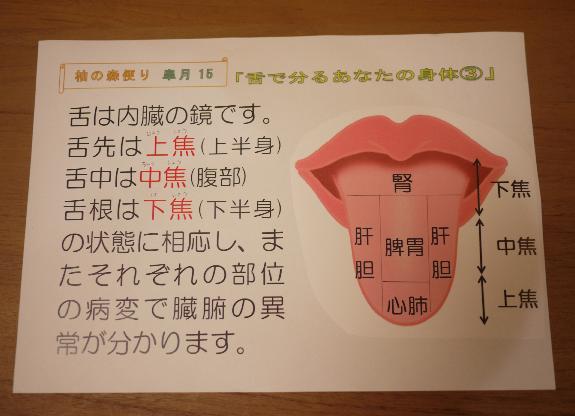 舌で分るあなたの身体③_f0354314_11405846.png