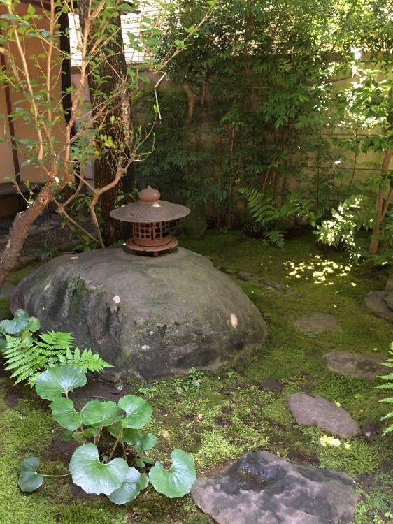The early summer tea ceremony by Dr.Hayashiya_d0334837_23324578.jpeg
