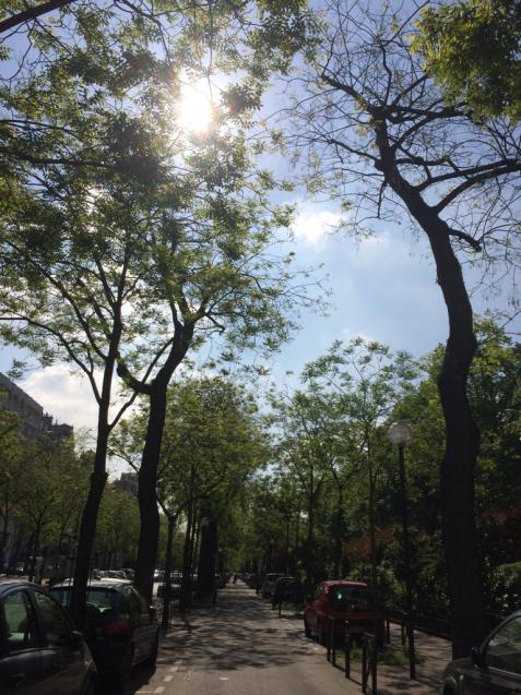 パリの花散歩_d0337937_09341371.jpg