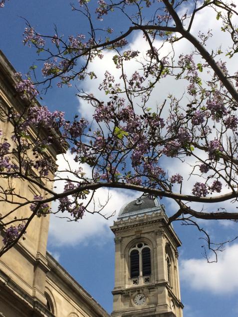 パリの花散歩_d0337937_17224623.jpg