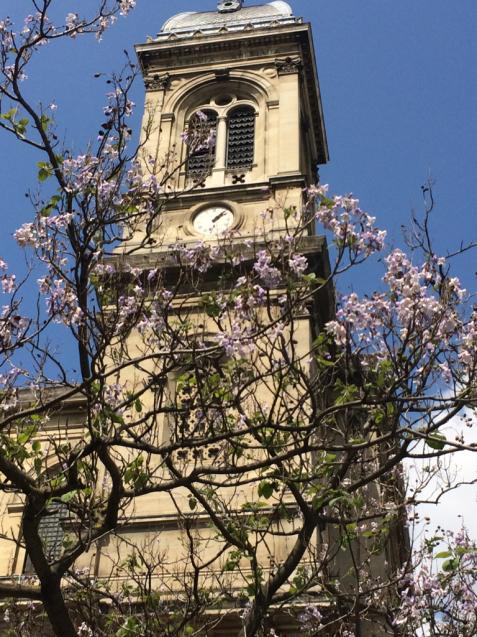 パリの花散歩_d0337937_17224640.jpg