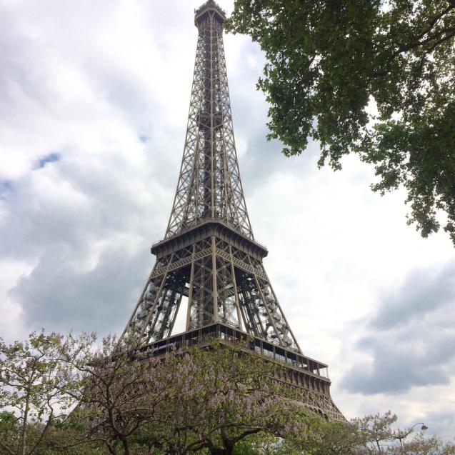 パリの花散歩_d0337937_17224824.jpg