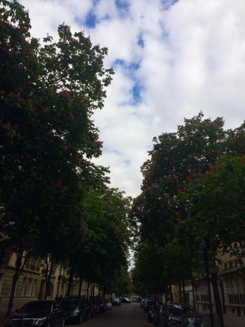 パリの花散歩_d0337937_17224893.jpg