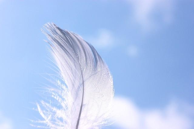 天使の羽根の雲〜空のメッセージボードには…?(^^)〜_b0298740_13133785.jpg