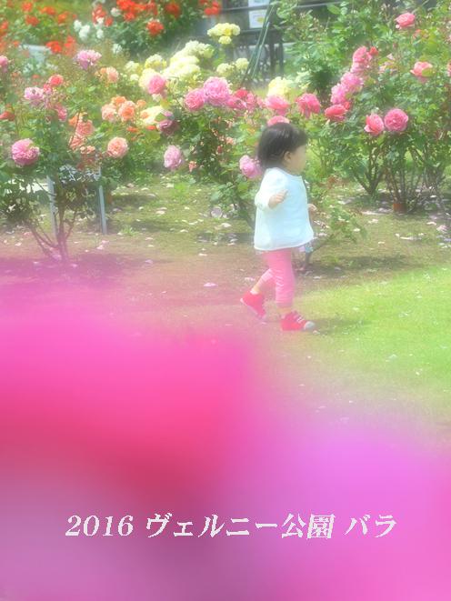 d0251161_15480270.jpg