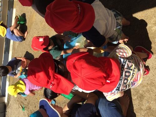 2・3歳児 一緒にどろんこ遊び_c0151262_1243879.jpg