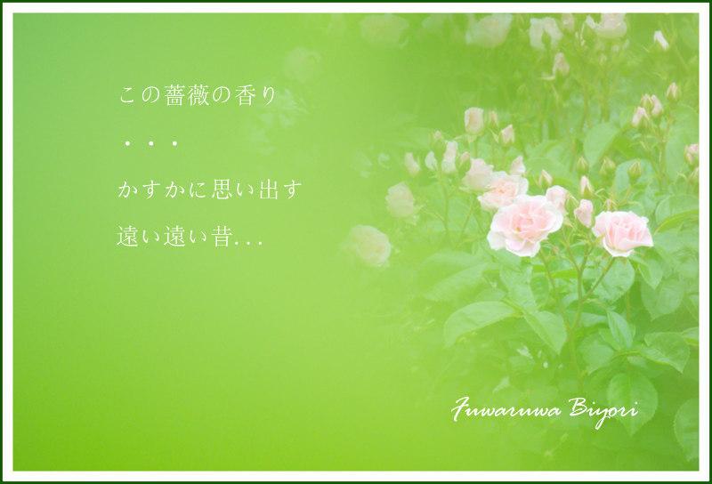 d0344864_10410504.jpg