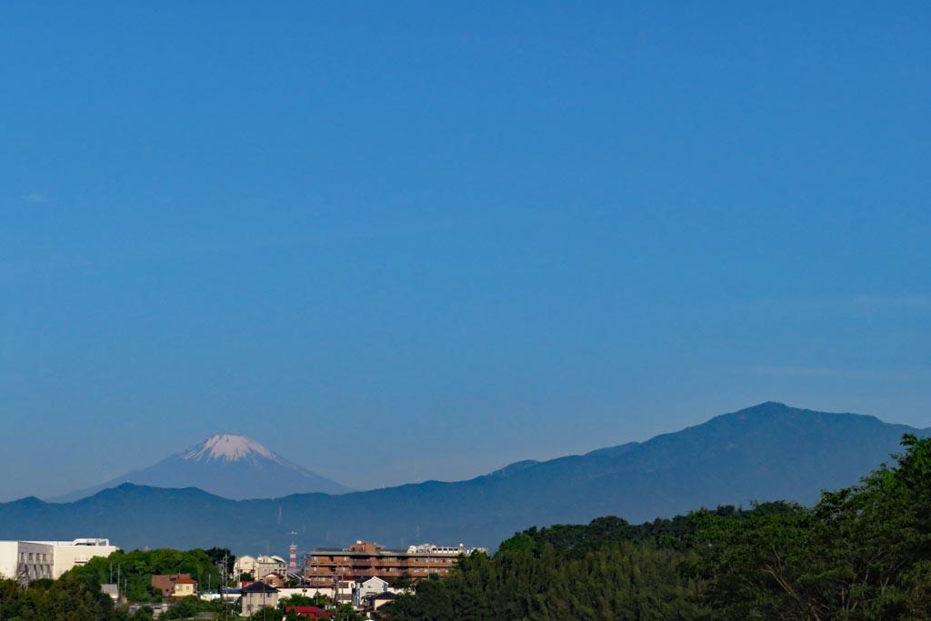 富士山/アカエリヒレアシシギ/アマサギ/チュウシャクシギ/カワセミ/黒点_b0024798_17541323.jpg