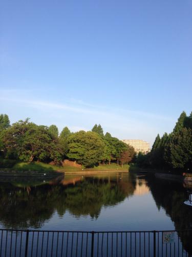 珍しく朝の散歩…👣_c0162404_11553348.jpg