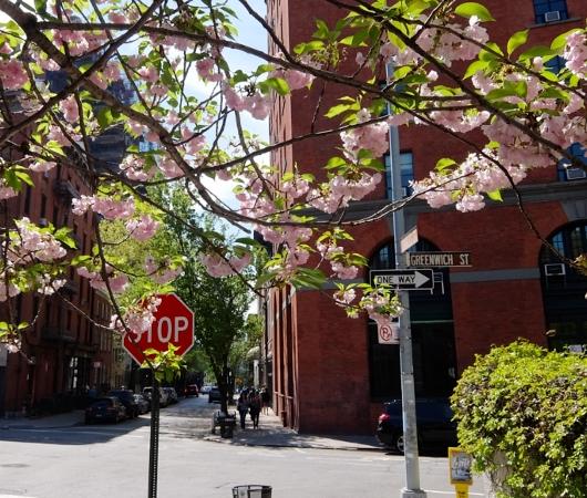 NYダウンタウンのグリニッジ・ストリート沿いをブラブラお散歩_b0007805_23282276.jpg