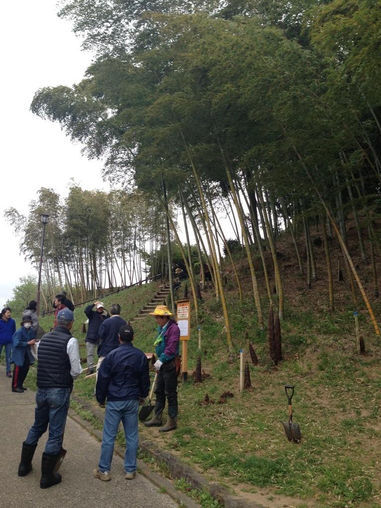 タケノコ掘り_c0310571_22534942.jpg