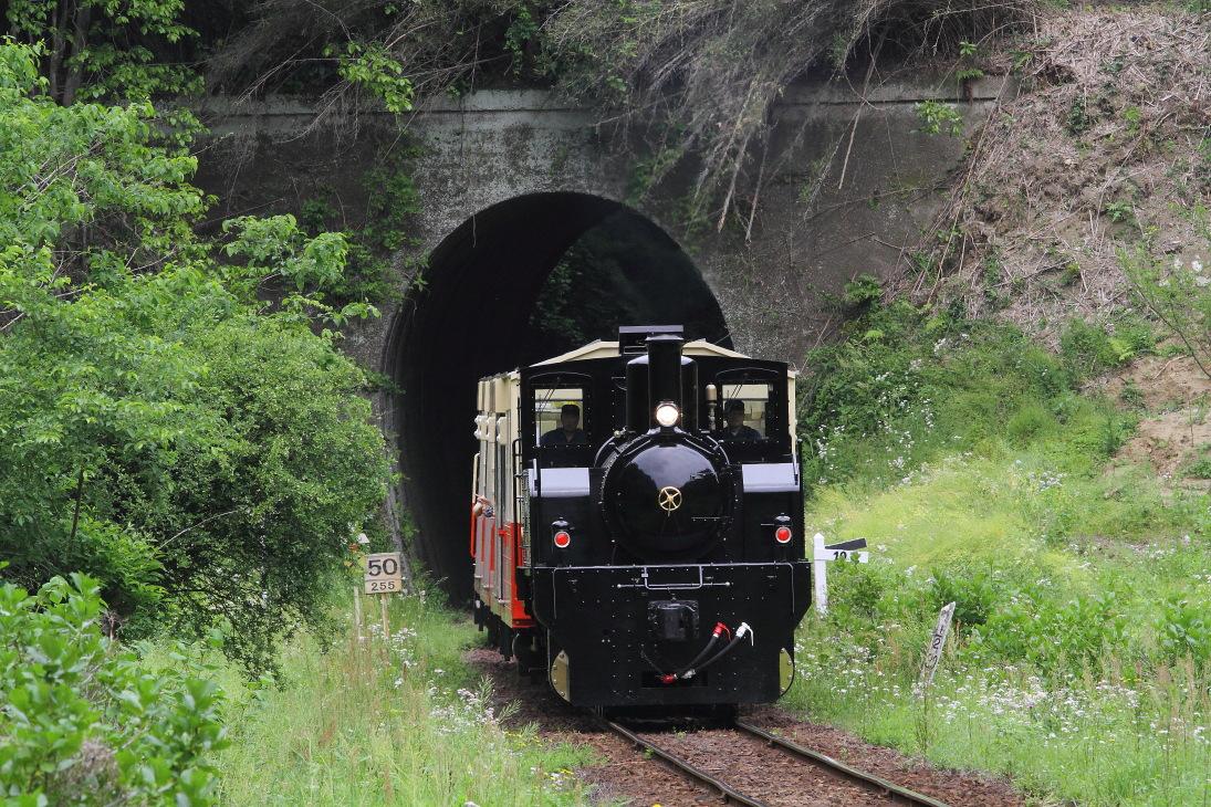小さなトンネル - 2016年春・小湊鐵道 -  _b0190710_2258309.jpg