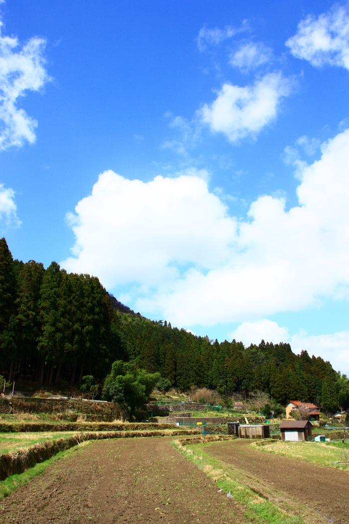 青谷~因州和紙の里~鳥取県_f0209122_17571975.jpg