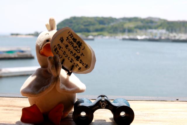 *横須賀*「ワンこぱん」横須賀散策 part 2_f0348831_22484059.jpg