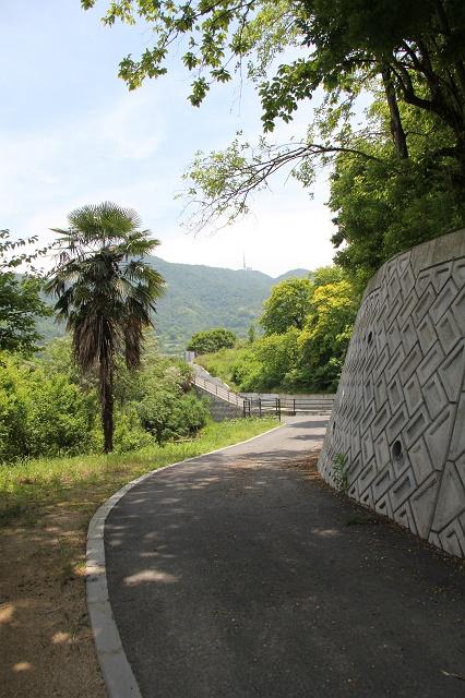 坂町遊歩道頭部ルートの途中から、坂町中心部を見渡す その3_b0095061_20221985.jpg