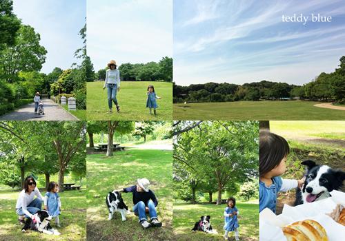 picnic in the park  公園でピクニック_e0253364_22412730.jpg