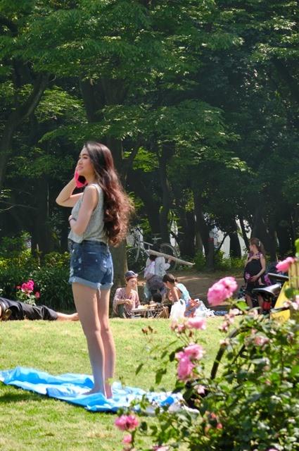 藤田八束のガーデニング写真@大阪市靭公園のバラは見頃、美しいバラの園_d0181492_21362251.jpg