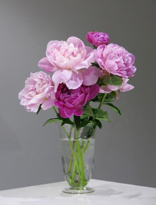英国 グラヴュール 花瓶 1889\'s JULY 22th_c0108595_23424393.jpg