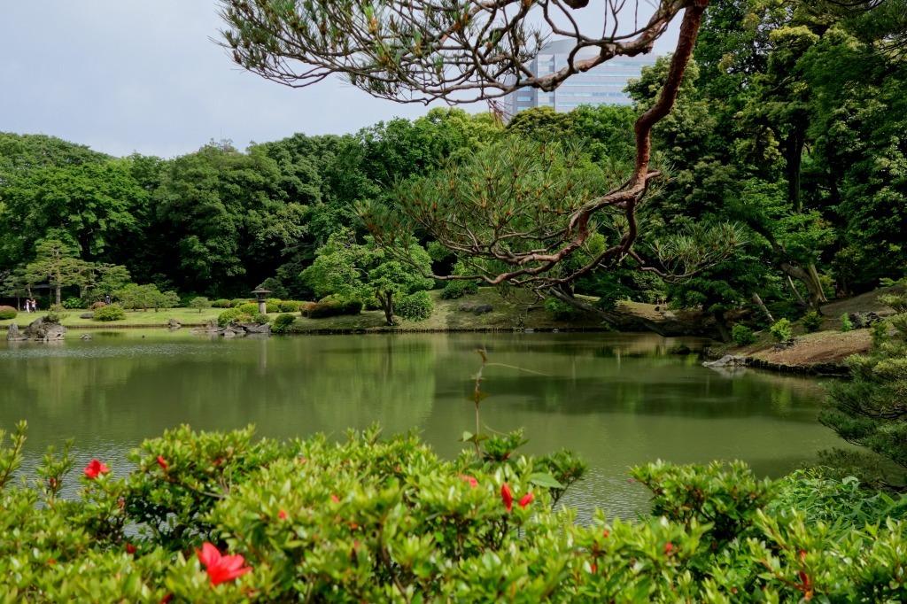 【東京】六義園_c0348200_10030864.jpg