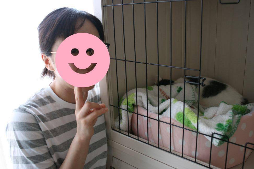 桃ちゃん 新生活スタート!_f0242002_1034497.jpg