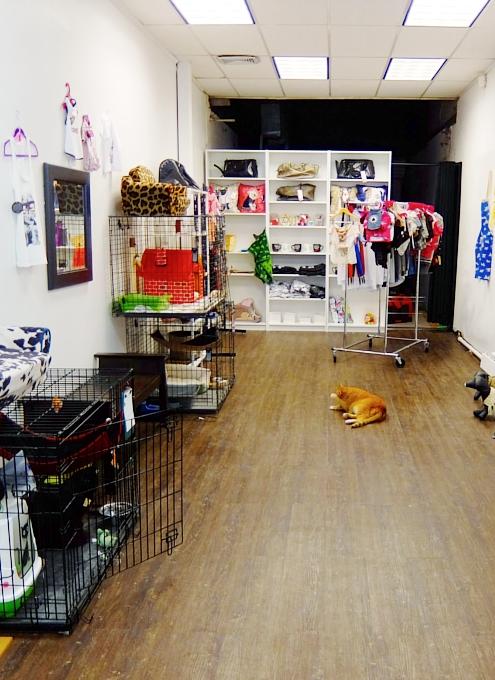NYに登場したワンちゃん、猫ちゃんを救うブティック、『シェルター・シック』Shelter Chic_b0007805_21592478.jpg