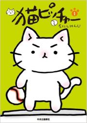 猫ピッチャー_a0100923_10455655.jpg